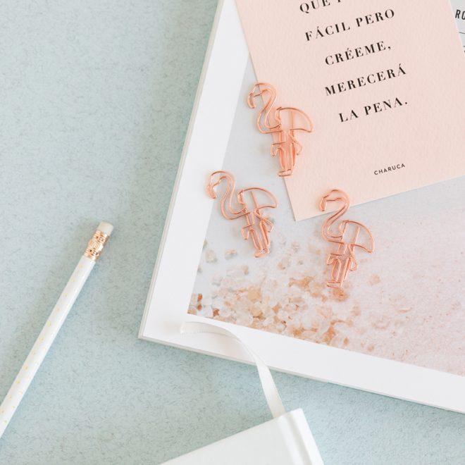 pack de clips flamingo charuca