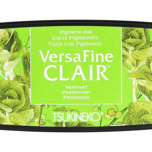 Tinta VERSAFINE CLAIR color Frondoso 76x35mm
